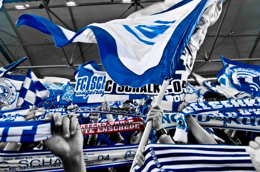 Schalke 04 07
