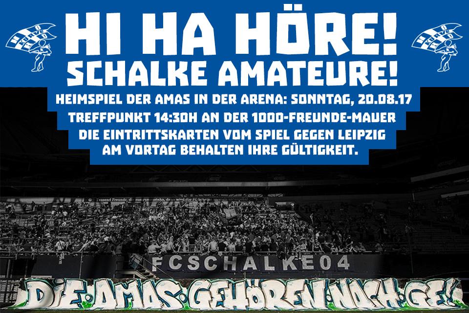 Amas_Arena