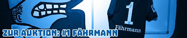 #1_Faermann